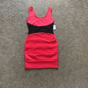 NWT Charlotte Russe Bodycon Dress
